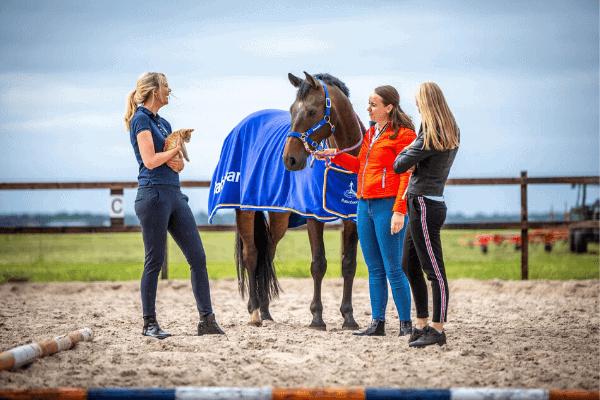 Gun paarden privéruimte