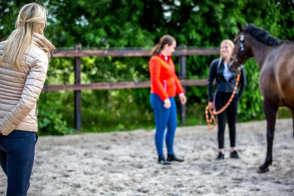 Bijscholing paardencoach kinderen & pubers